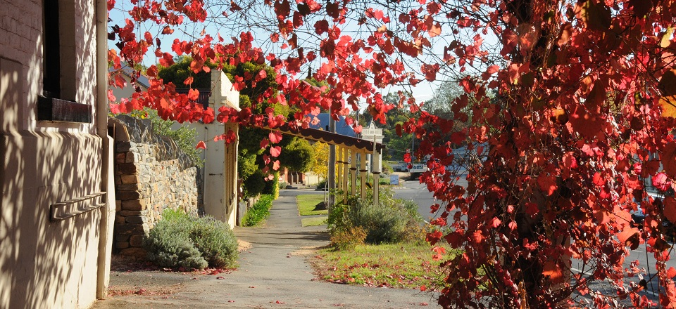 Streetscape of Chewton at Red Hill Hotel