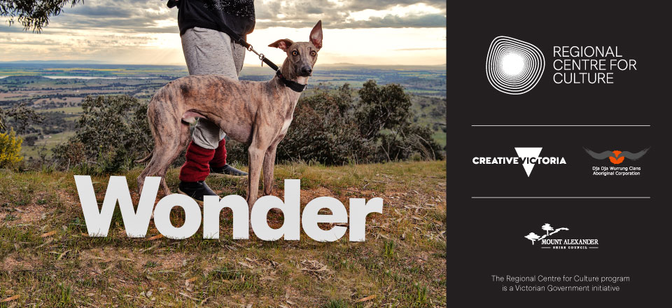 Creative landscape for the Regional Centre for Culture Wonder campaign