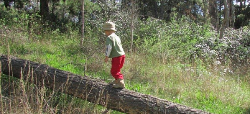 Nature play at Castlemaine Botanical Gardens